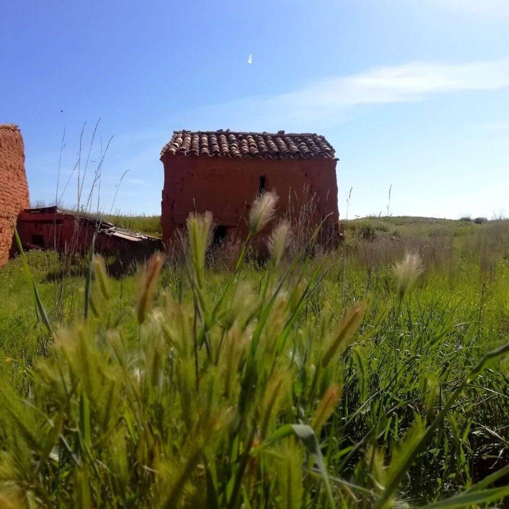 Agroturismo Aragón Home