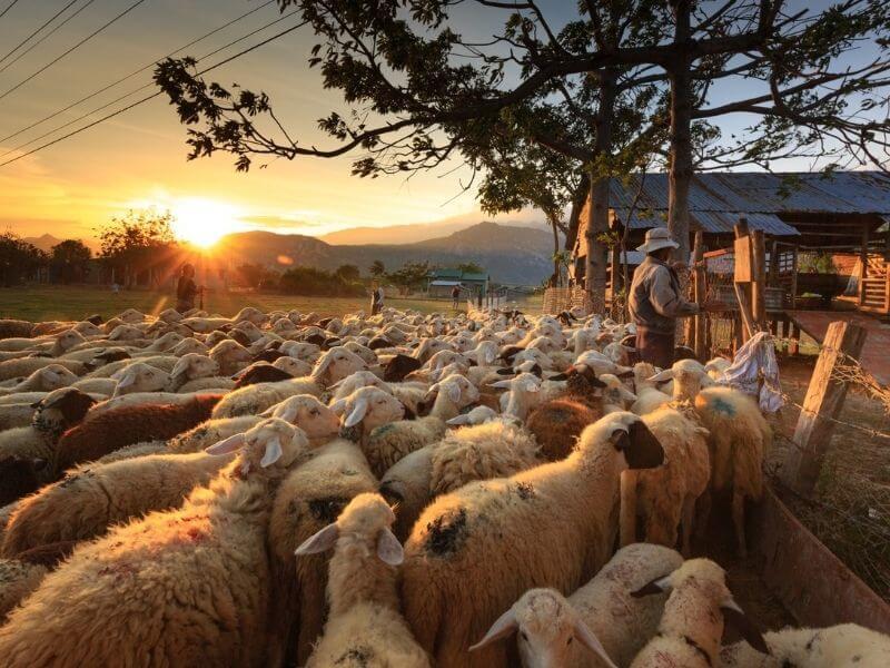 Agroturismo en Aragón Aganza